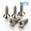 Modified Truss Head Philips Self Tapping Screws