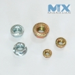 Hexagon Nut (ISO4032)